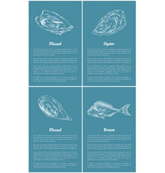 Mollusk and bream fish set vector