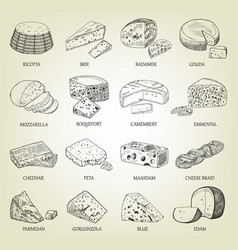 Sketch of different cheeses icons vector
