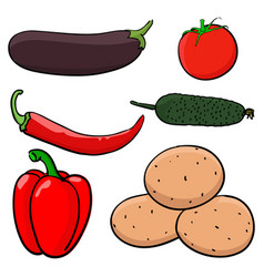 vegetables hand drawn colored sketch vector image