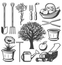 vintage garden elements collection vector image