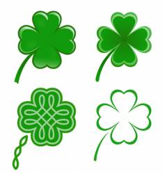 lucky clovers vector image