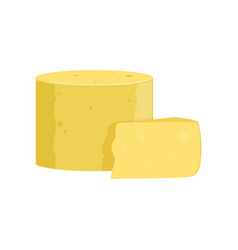 Delicious parmesan cheese in rounded cylinder vector