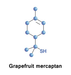 grapefruit mercaptan monoterpenoid vector image