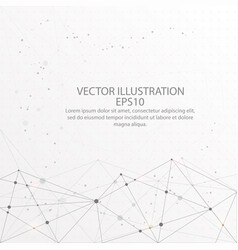 abstract background low poly wire frame on white vector image
