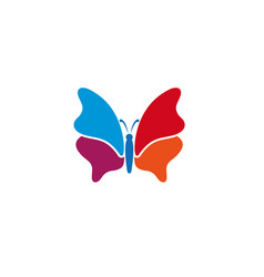 butterfly beautiful and colorful bright and vector image