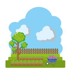 cultivated with tree and wood grillage farm vector image