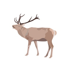 Deer with antler vector