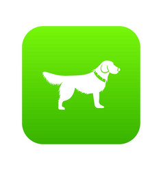 dog icon digital green vector image