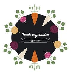 Turnips daiko radish carrot vegetables vector