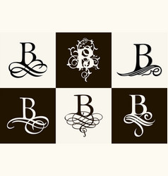 Vintage set capital letter b for monograms and vector