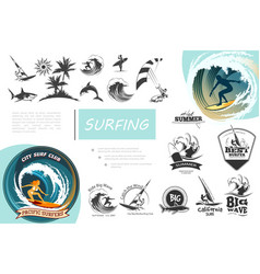 vintage surfing elements set vector image