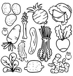 vegetable object set of doodles vector image vector image