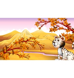 A tiger beside the river vector image vector image