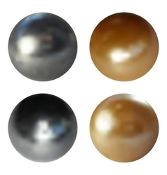 Metallic chrome spheres set on white background vector image
