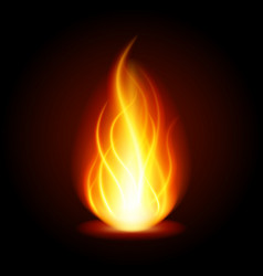 abstract fire flame light on black background vector image