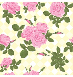 Beautiful seamless pink roses pattern vector