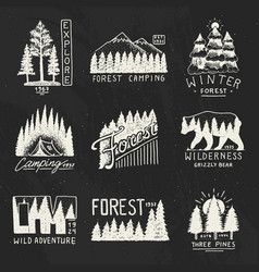 Camping badges mountains coniferous forest and vector