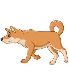 cartoon dog walking on white background vector image