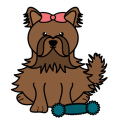 cute little dog with toy character vector image