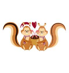 Cute squirrel with acorn christmas hat cartoon vector