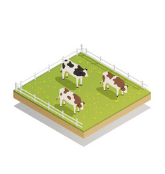Dairy pasture isometric composition vector