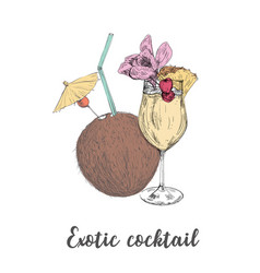 Exotic cocktail coconut pineapple drink sketch vector