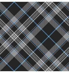Pride scotland platinum kilt tartan diagonal vector