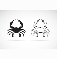 two crab on white background animals crab icon vector image