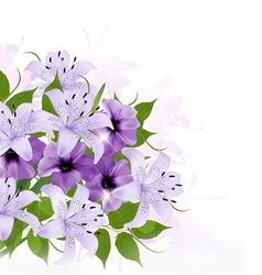 Background With Colorful Beautiful Flowers vector image