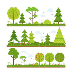 landscape set with forest trees and other floral vector image vector image