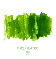 greenery hand paint watercolor texture background vector image