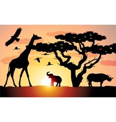 elephant giraffe rhinoceros vector image vector image