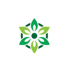 circle laef eco nature logo vector image vector image