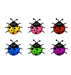 cartoon colorful ladybug set animals and insects vector image