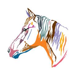 Colorful decorative portrait horse-2 vector