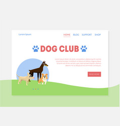 dog club banner landing page template with place vector image