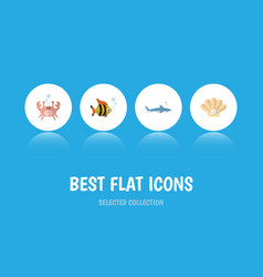Flat icon nature set of shark cancer conch and vector