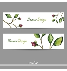 GreenBanner vector image