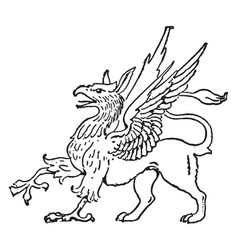 griffin vintage vector image