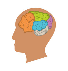 Human head brain process icon vector