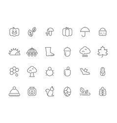 Linear autumn symbols icons set isolate vector