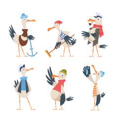 seagull sailor cute funny sea or ocean bird vector image