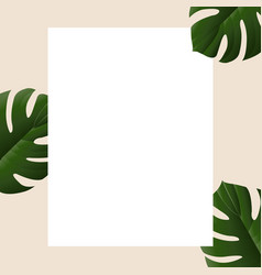 Summer banner with tropical leaves vector