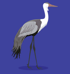Wattled crane cartoon vector