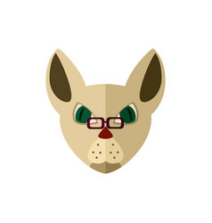 siamese cat head with glasses icon vector image vector image