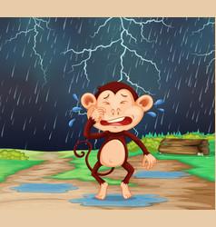 A monkey cary in raining scene vector