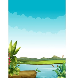 A river with plants and a wood vector image