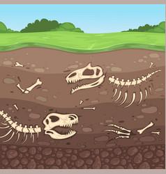 archeology bones underground dinosaur bones soil vector image