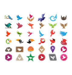 birds 36 icons set logo design icons vector image