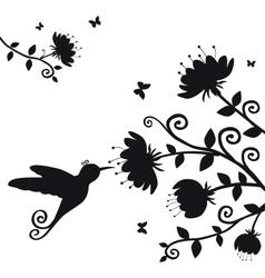Kolibri vector